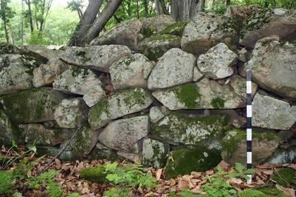 Ученые распознали в памятнике на «Земле леопарда» корейскую крепость