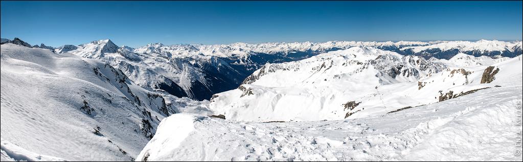Страшные обитатели альпийских ледников