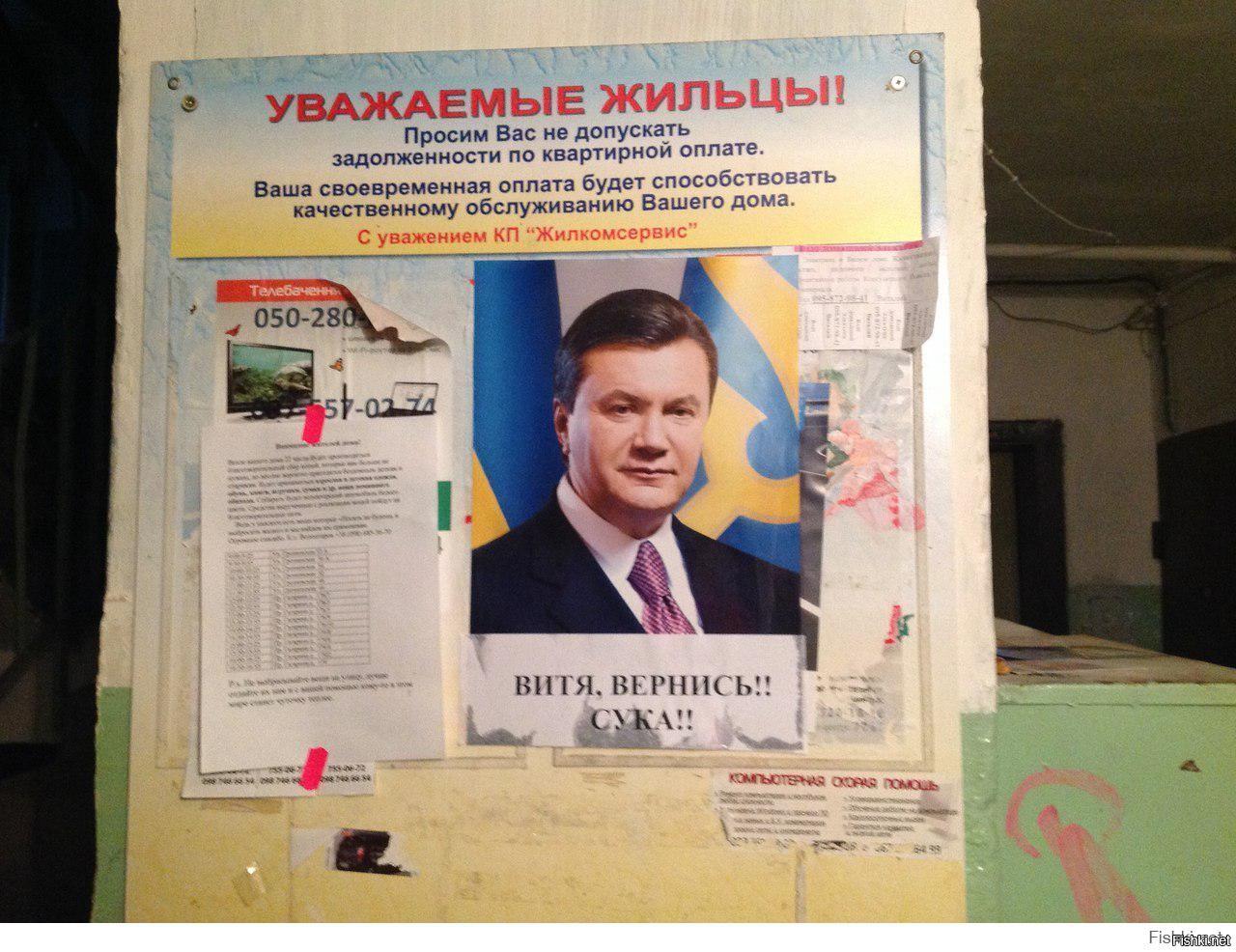 Большинство зрителей канала NewsOne высказались за возвращение Януковича