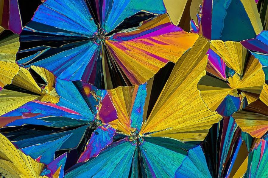 Обезболивающие лекарства под микроскопом