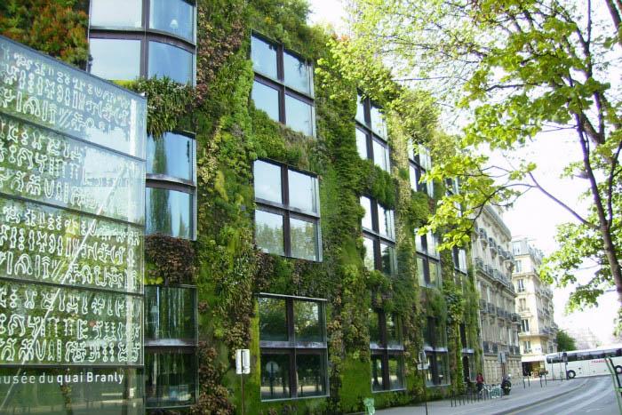 Плюсы вертикальных садов на фасадах домов