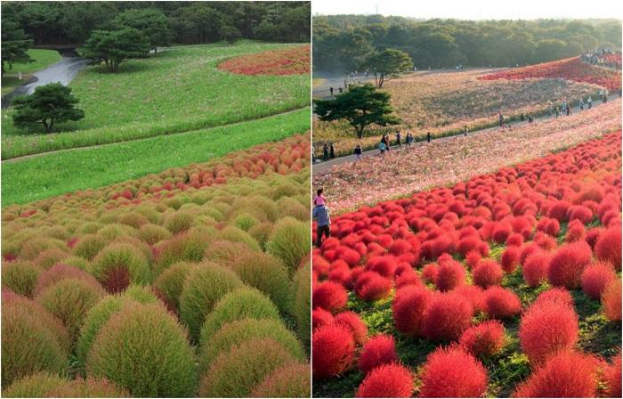 11 фантастических пейзажей из разных уголков мира, глядя на которые сердце замирает