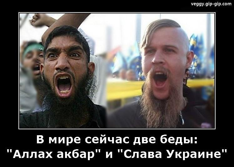 Донецк – а за окном – то день, то ночь…