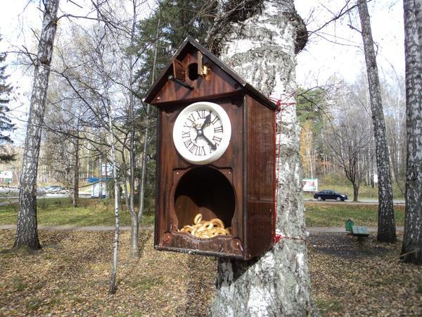 Кормушка из часов. Фото с сайта fotoham.ru