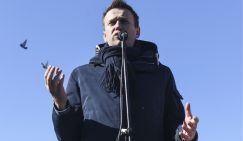 За детские «группы смерти» ответит Навальный