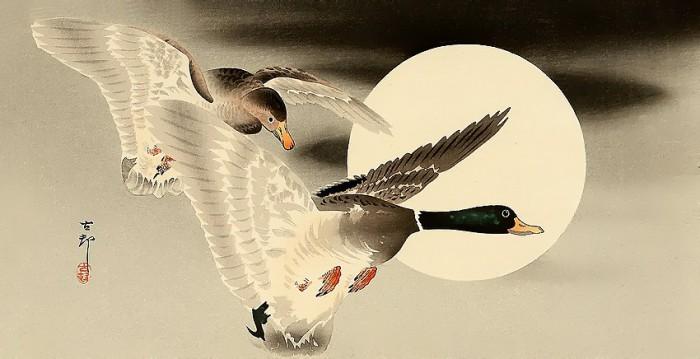 Нежные гравюры японского художника Ohara Koson