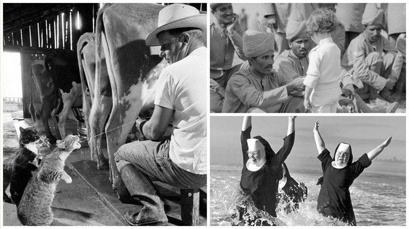 Невероятно душевные и трогательные исторические фотографии