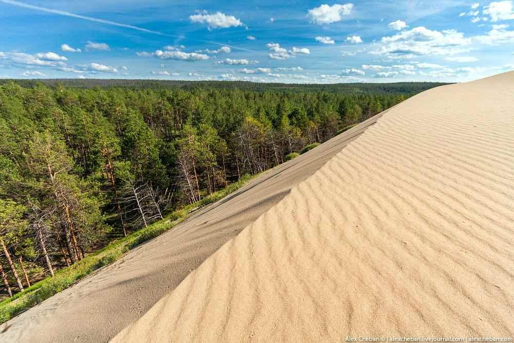 Пустыня, которая прячется в сибирских лесах