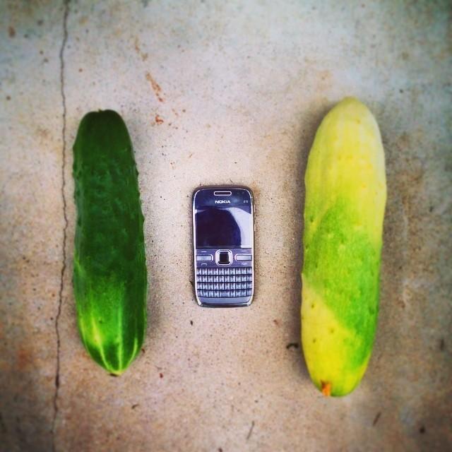 Когда по телевизору говорят, что радиационный фон в норме, в норме, в норме гигантизм, огромные овощи, огромные фрукты, огромные ягоды, прикол