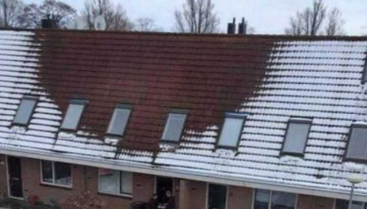 Увидев это пятно на крыше, соседи тут же позвонили в полицию!