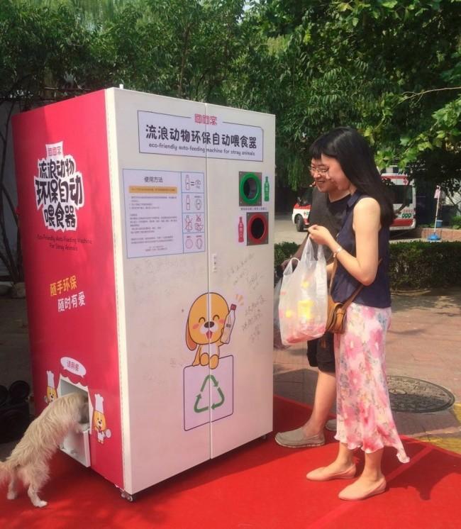 Автомат для раздачи корма бездомным животным доброта, животные, мир
