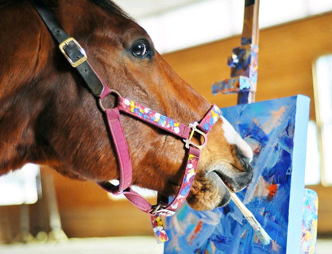 Бывший скаковой жеребец, чтобы не попасть на скотобойню стал художником-авангардистом