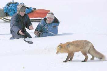 Сахалинский репортаж о рыбалке