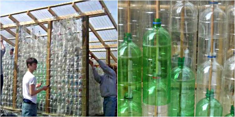 теплица из пластиковых бутылок