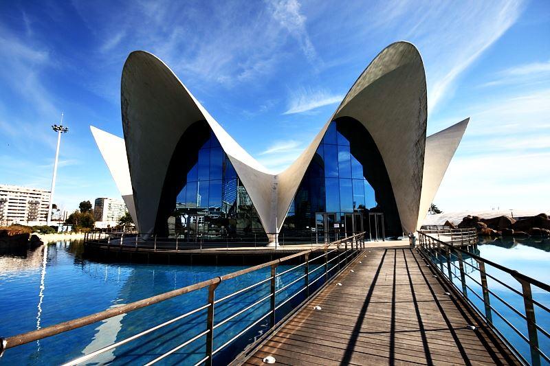 Океанографический парк Валенсии Испания. Океаны в миниатюре. Самые известные и крутые океанариумы мира. Фото с сайта NewPix.ru