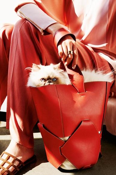Тренды сезона — сумка-ведро. Что это такое и с чем её носить