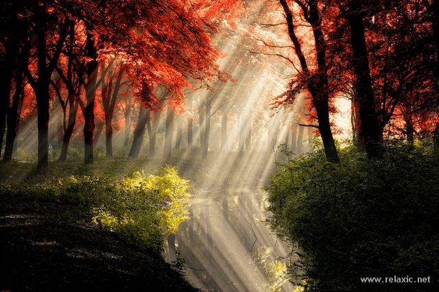 Sun_rays_001