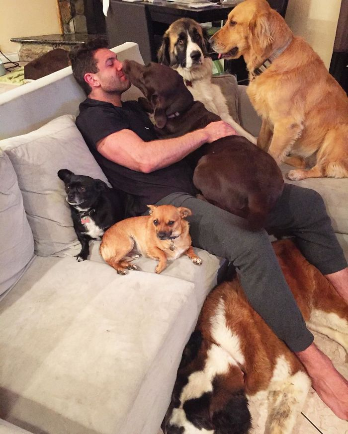 This Man Won't Stop Adopting Rescue Animals, And This Is What His Life Looks Like Now