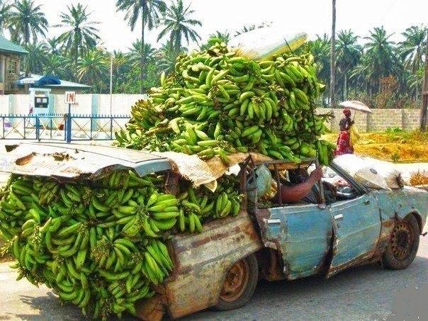 Коммерсанты банановые