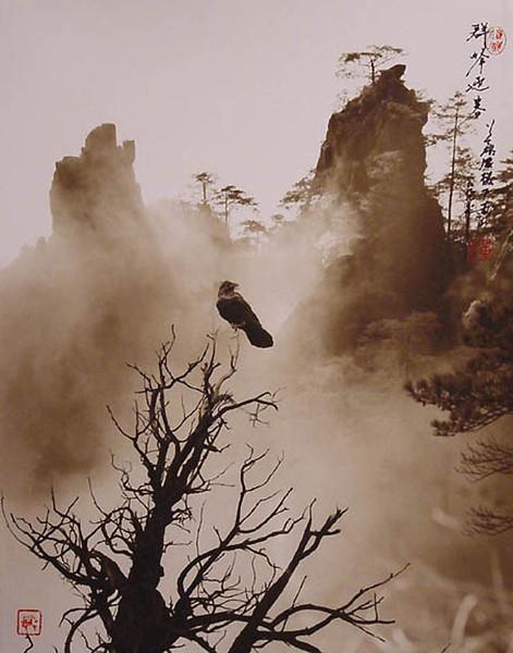 Выдающийся фотограф-пейзажист Дон Хонг-Оай (Don Hong-Oai )(1929-2004)