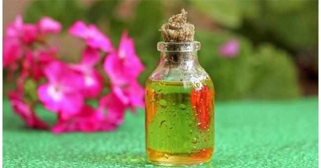 Полезные свойства эфирного масла герани