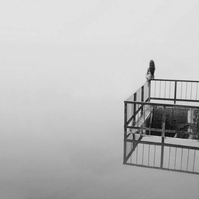 «Белая тишина». Фотограф Павел Терешковец