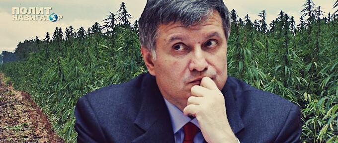По стопам Гелетея: Аваков рассказал, как и кто уже в этом году завоюет Крым и Донбасс