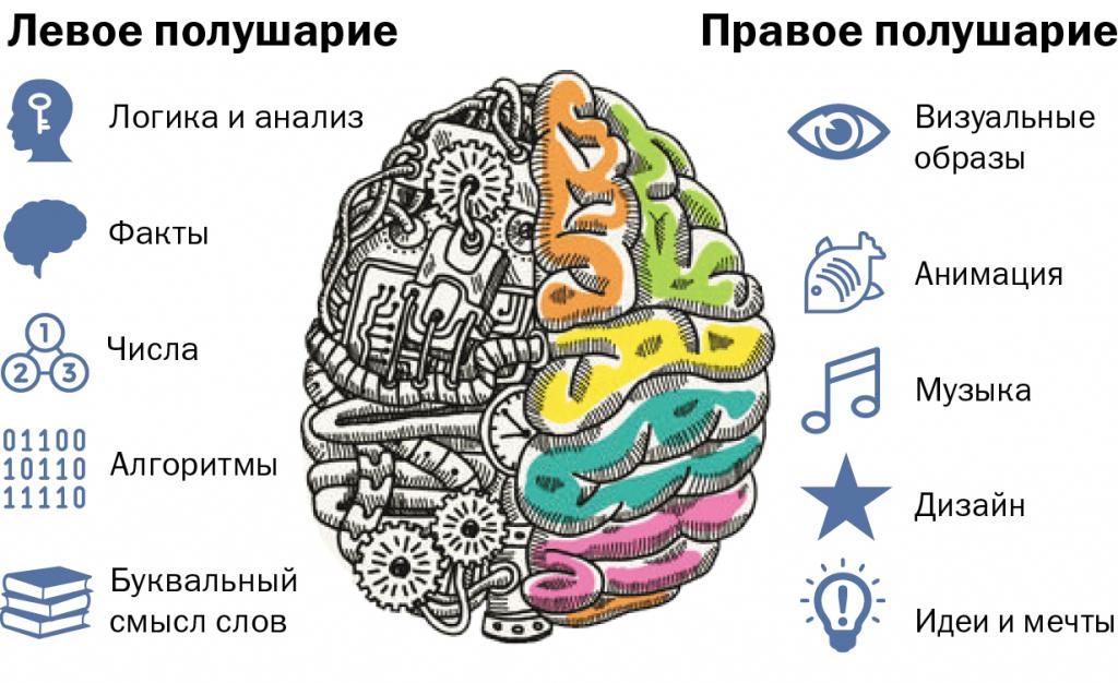 Развитие мышления: способы тренировки мозга.