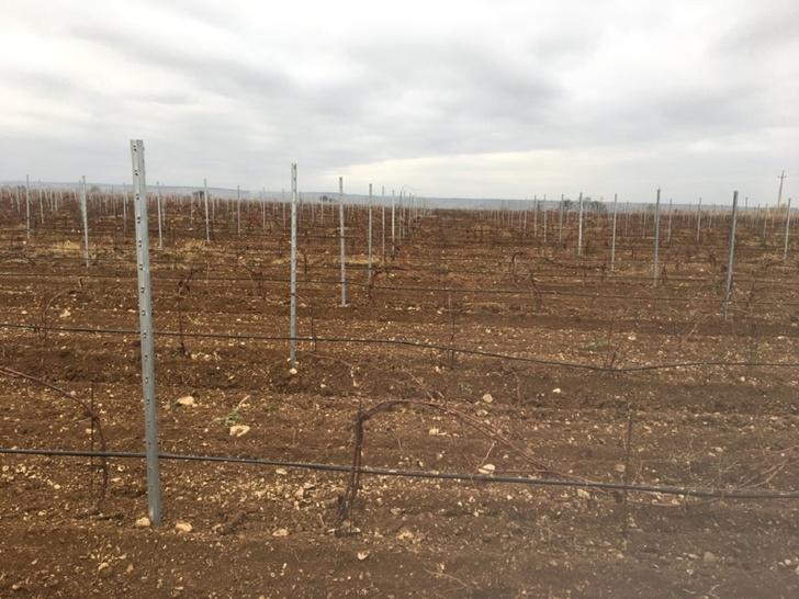 В Севастополе на землях сельхозпредприятий продолжается ввод в эксплуатацию мелиоративных систем