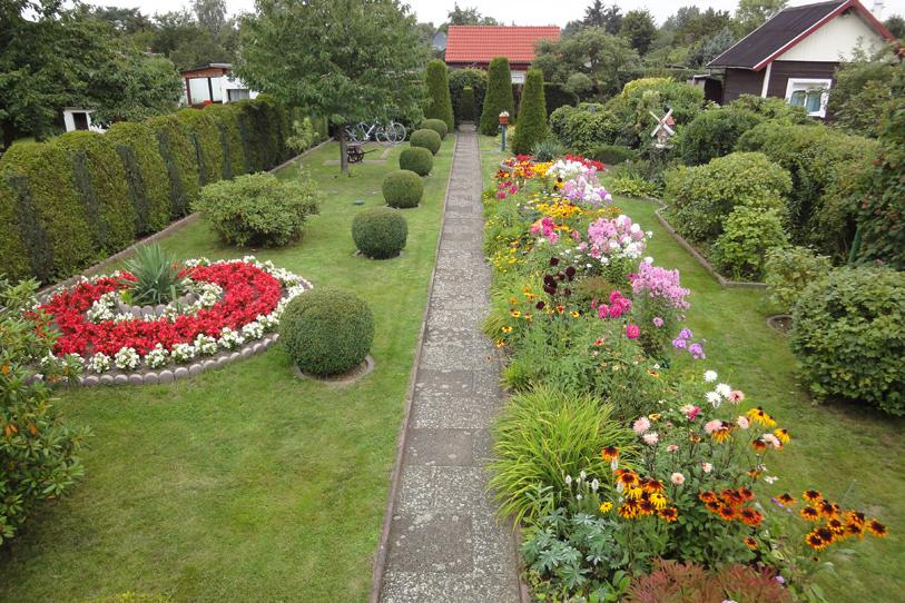 Цветы и клумбы на дачном участке