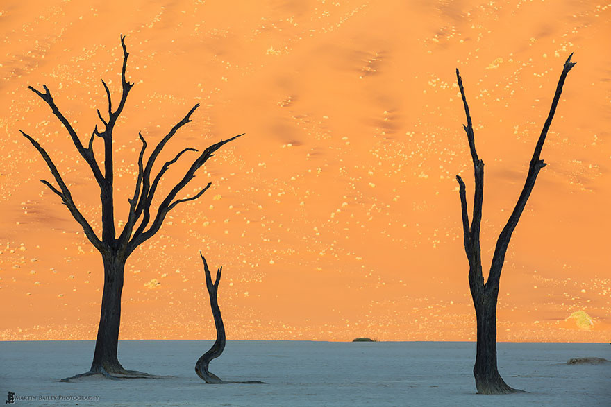 21. Пустыня Намиб, Намибия земля, красота, планета, природа