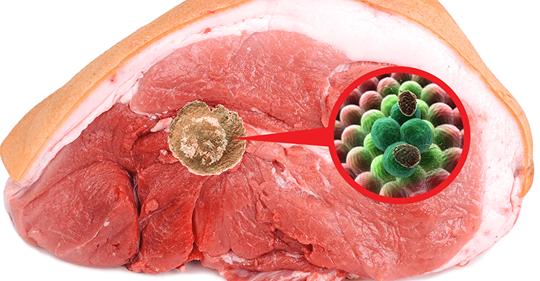 Исследователи показывают, как мясо, наполненное раком и другими болезнями, все еще продается
