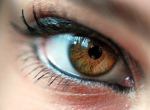 Лечение болезней глаз — рецепты народной медицины