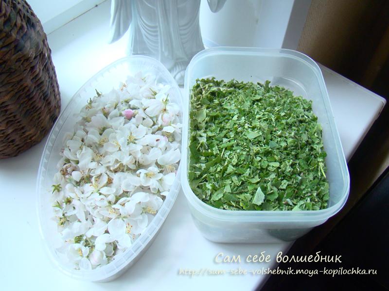 Как приготовить целебный ферментированный чай на зиму своими руками