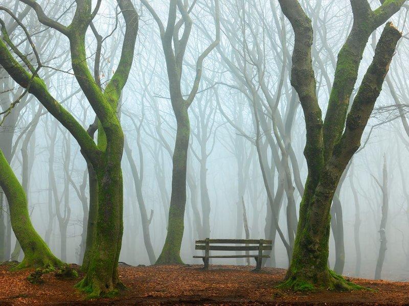 30 удачных мест, чтобы поставить скамейку