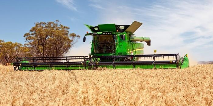 Китай забраковал украинский урожай