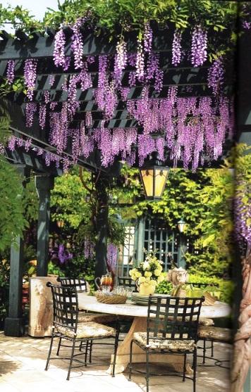 Прекрасные дизайнерские идеи для дома и сада — пергола, или беседка во дворе