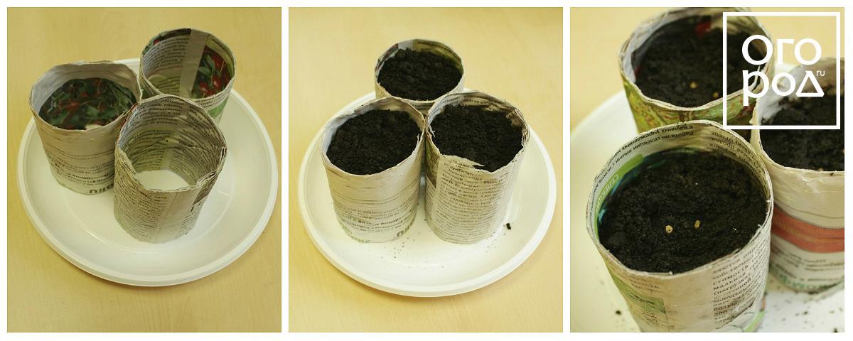 Как сделать стаканчики для рассады из бумаги своими руками