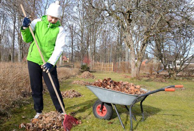 Весенняя уборка сада: 8 советов