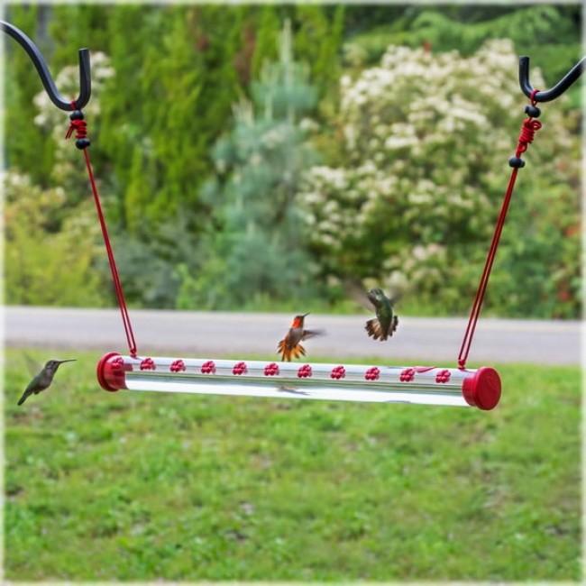 Поилочки для колибри, Джорджия доброта, животные, мир