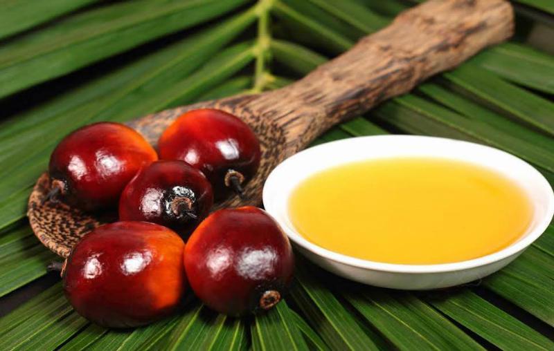 Простой способ проверить молокопродукты на содержание пальмового масла