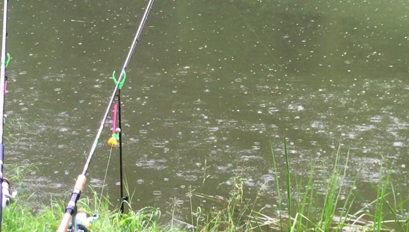 стоит ли идти на рыбалку после дождя