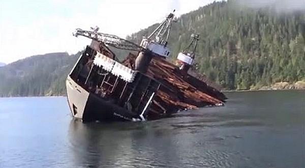 Как перевозят и выгружают лес в Канаде (Видео)