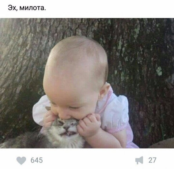 ЯЖЕМАТЬ