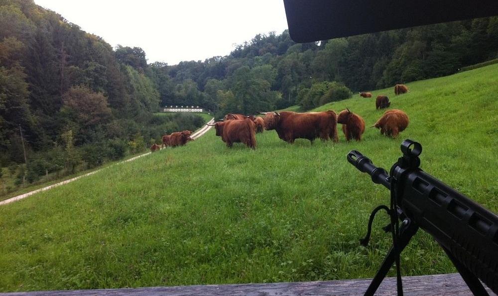 Дорога со спецэффектами. В швейцарском тире стреляют над проезжающими машинами