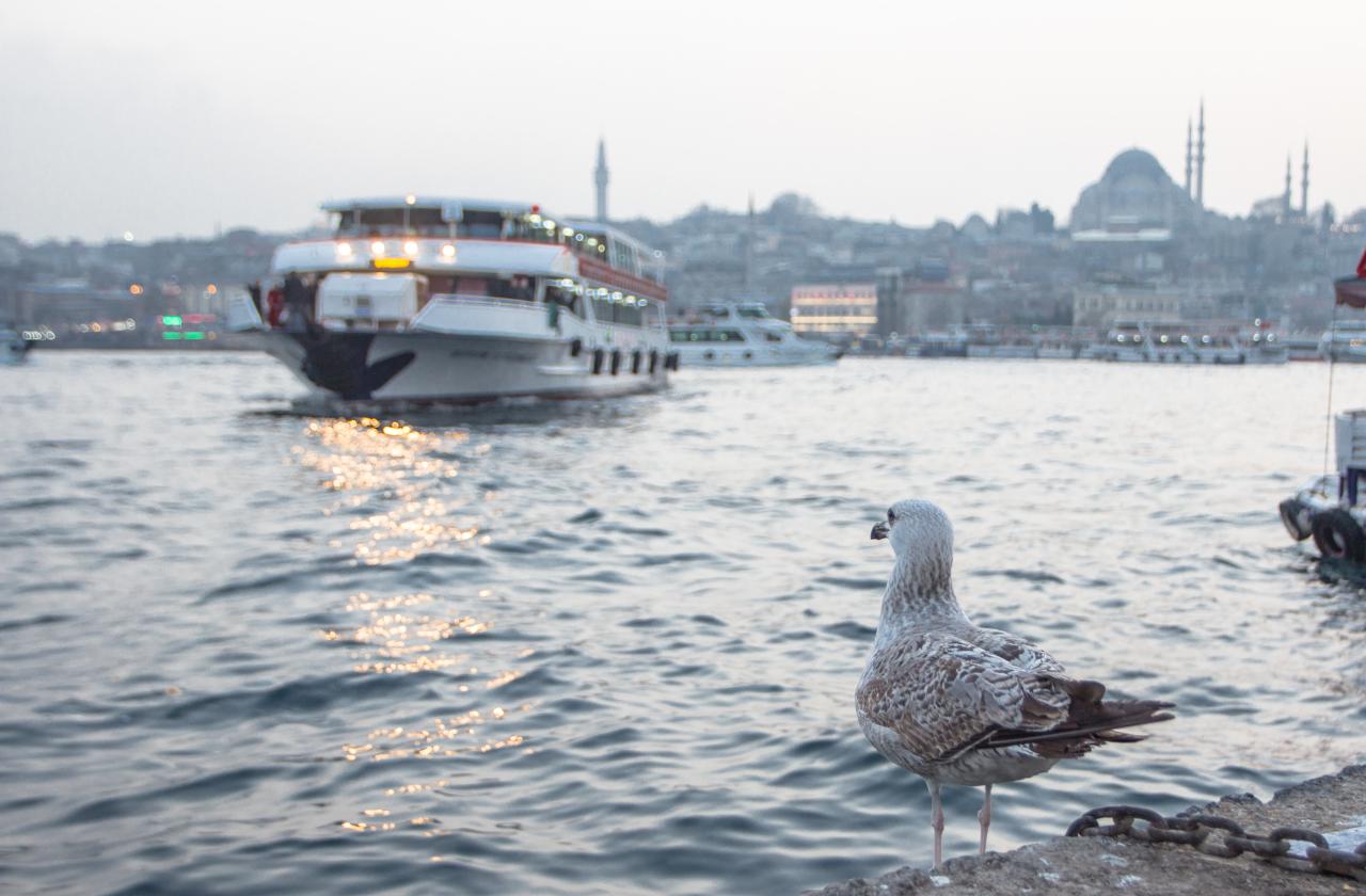 Стамбул наизнанку