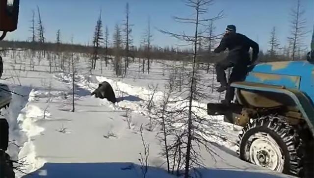 В сети появилось видео допроса подозреваемого в убийстве медведя в Якутии