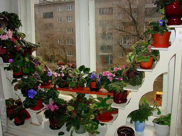 Полки на подоконник для цветов из дерева