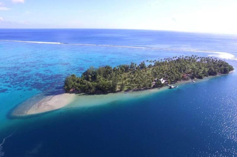 Давно мечтаете о собственном острове? В августе у вас есть шанс осуществить мечту!