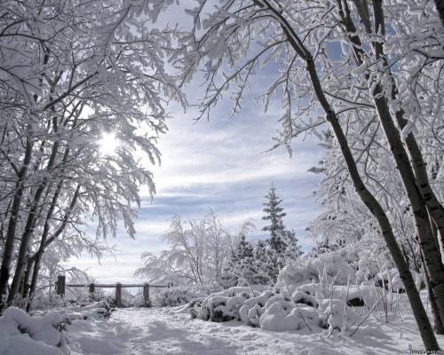 и где обещанный мороз....jpg